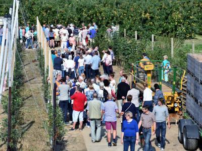 2016-09-18      Dag van de Landbouw (106)